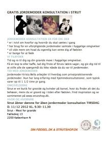 STRUT ABEN JDM KONS-u.overskrift